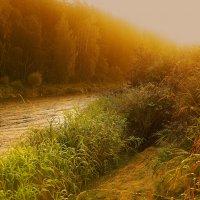 Рассветный ливень на реке Гауя :: Peiper ///