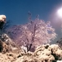 Иерусалим. Емин Моше. Снег. :: Игорь Герман