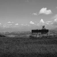 Созерцая :: Роман Самотес