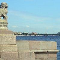 Прогулки по набережной :: Евгения Латунская