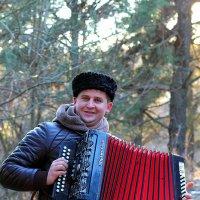 гармонист :: Александр Семейников