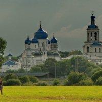 И снова  к Покрова на Нерли! :: Владимир Шошин