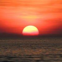 Солнце  в тропиках :: Вик Токарев