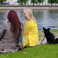 Три подружки... :: Igor Shoshin