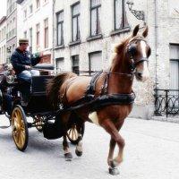 Вдохнуть ощущение Брюгге... :: Любовь Гайшина