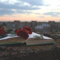 книга :: Анна Ярмоленко