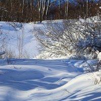 Снег :: Вячеслав