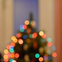 Новогоднее настроение :: Лия Таракина