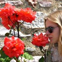 Аромат Итальянской Розы :: Надежда Гусева