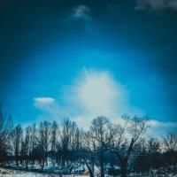 Морозный день в лесу :: dimakoshelev Кошелев