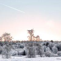 Зима в Финляндии. :: Elena Klimova