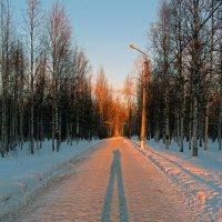 Ну очень длинная тень :: Владимир Шибинский