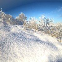 снежные дюны :: liudmila drake
