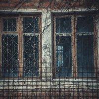 В пустом окне :: Егор Рубинский