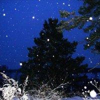 Снег идет :: Татьяна Т