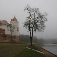 Мирский замок. Белорусь. :: Lana