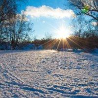 Яркая зима :: Станислав Стариков