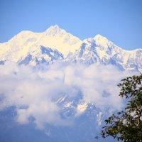 Гора Канченджанга 8586 м :: Полина Polli