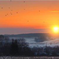 Вечер на краю деревни :: Nikita Volkov