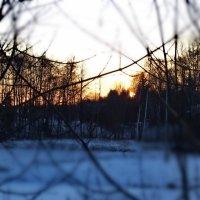 29 января, восход 3 :: Юрий Бондер