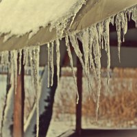 Зимушка . Зима :: Виктория