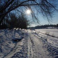 Долгопрудный, канал, зима :: Константин Вергун