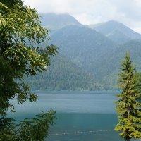 Озеро Рица :: Кристина Воробьева