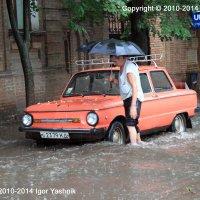 Дождь. :: Игорь Яшник