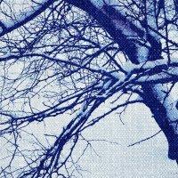 Зима за окном :: Юля