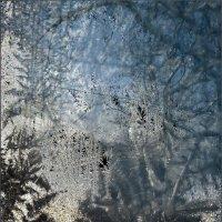 Морозный гербарий :: Наталья Rosenwasser