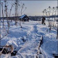 Зимними тропами :: Наталья Rosenwasser