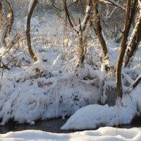 зима похожа на весну :: Елена Новгородцева