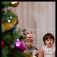 Новый год :: Дмитрий Рожков