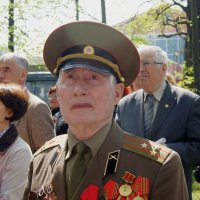 9 мая :: Ирина Гринченко