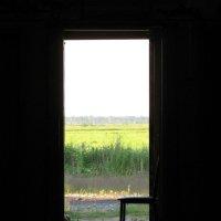 Дверь-В-Лето :: Валерий Смирнов