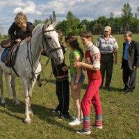 Давненько шашку в руки я не брал! :: Николай Бабухин