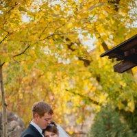 Золотая осень :: Дмитрий Катин