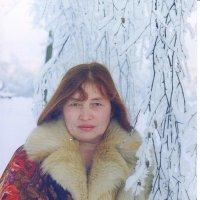Зимний портрет. :: Михаил Попов