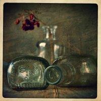 Пузырёк и веточка калины :: Ольга Мальцева