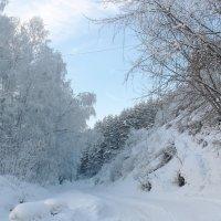 Поет зима - аукает, мохнатый лес баюкает стозвоном сосняка(С.Есенин) :: Нина северянка