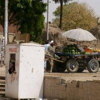 Египет :: Юрий Егоров
