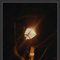 свет в ночи :: Shmual Hava Retro