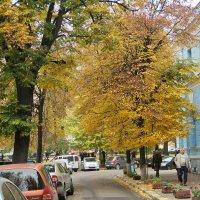 осенняя улочка :: valeriy g_g