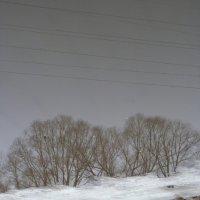 однажды  весна :: Дмитрий Потапов