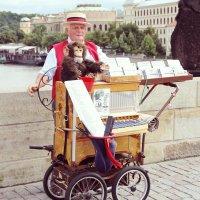 Прага 2012 :: Елена Неведицына