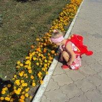 Цветочки :: Ольга Петрова