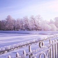 Зима :: Дашка Adms