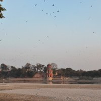 Индия :: Алексей Хвастунов