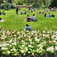 Долгожданный солнечный день в Шотландии :: Ирина Краснобрижая