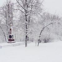 Парковая зона в Кузьминском лесу Москва :: Ольга Кривых